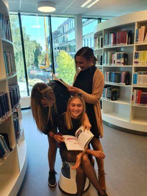 studije na engleskom u holandiji