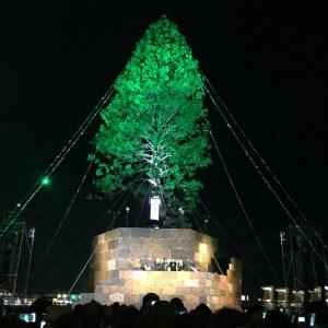 世界一のクリスマスツリー点灯