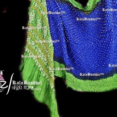 Parrot Royal-Blue GajiSilk Saree