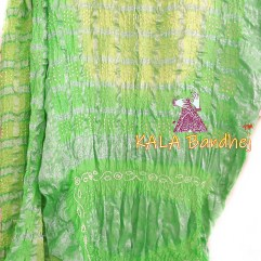 SpringGreen - LemonLight Gharchola Saree