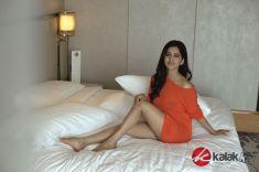 Actress Nabha Natesh Photos (1)