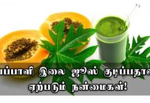 Papaya Leaves Juice