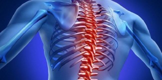 Spine Tips