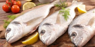 Uses Of Fish : Health Tips | Beauty Tips | Daily Health Tips | | Top 10 Best Health Benefits | Easy To Follow Daily Health Tips