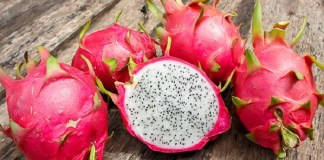 Uses Of Dragon Fruits   Kollywood   Tamil Cinema   Health Tips     Natural Beauty Tips   Beauty Tips   Top 10 Best Health Benefits