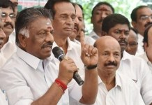O. Panneerselvam : Political News, Tamil nadu, Politics, BJP, DMK, ADMK, Latest Political News, edappadi palanisamy, Chennai, High Court