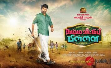 Namma Veetu Pillai Movie Posters   Sivakarthikeyan, Anu Emmanuel, Aishwarya Rajesh, Soori, Yogi Babu, Samuthirakani, Natty Natraj, Bharathiraja,