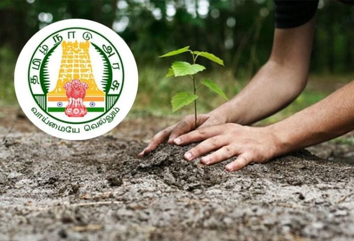 Tamil Nadu For timber Planting Project : Tamil nadu, Politics, BJP, DMK, ADMK, Latest Political News, Tamil Nadu Goverment
