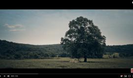 Yasin Keleş & Neşet Ertaş – Yanıyorum