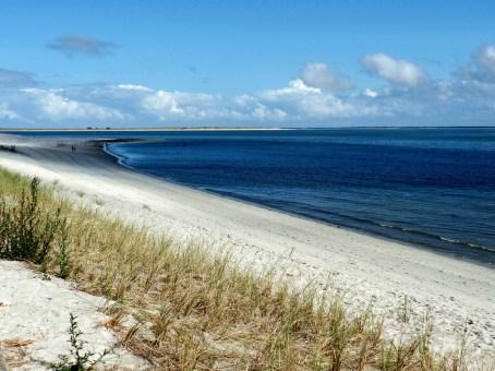 beach-444234_1920