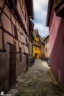 Eguisheim-IMG_2467