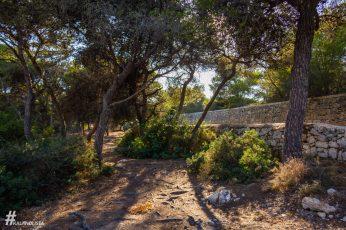 Malta_IMG_5612