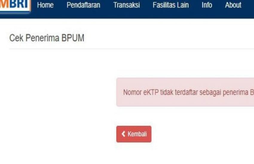 Cek Penerima BPUM atau BLT UMKM 2021 di eform.bri.co.id/bpum