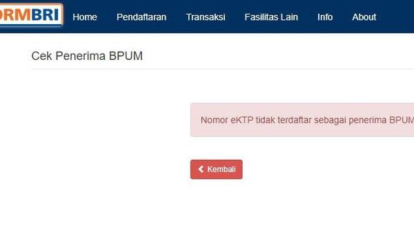 Cek Penerima BLT UMKM 2021 di eform.bri.co.id