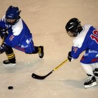 Kan ishockey överleva som folksport?