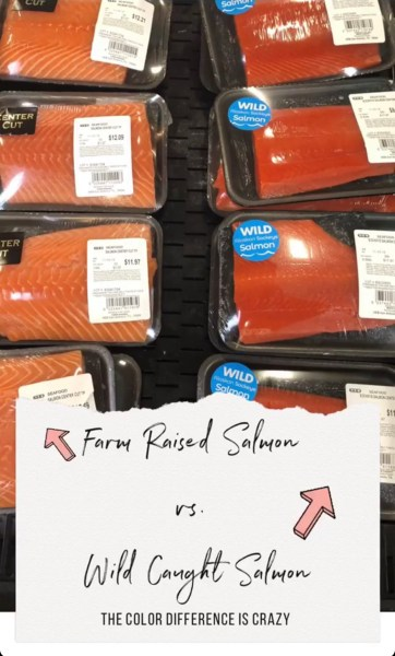 packaged salmon with farm raised on the left and wild caught on the right