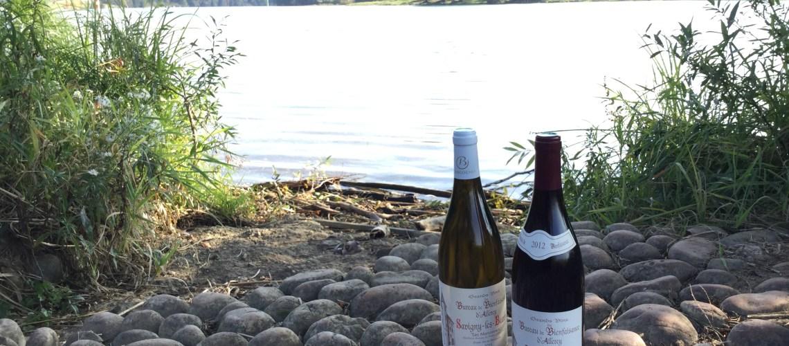 Bouteilles de vin d'Allerey-sur-Saône, côte de Beaune en bord de Saône