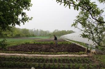 Les Jardins du Coeur de Saint Marcel