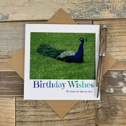 Peacock Water Colour Effect Birthday card