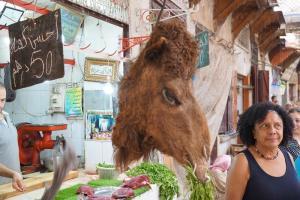 Fes, Kamel am Markt