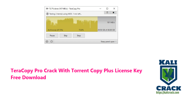 TeraCopy Pro Crack With Torrent Copy Plus License Key  Free Download