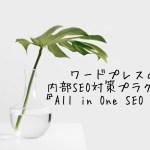 WordPressの内部SEO対策プラグイン『All in One SEO Pack』の設定方法 − アフィリエイト動画まとめ