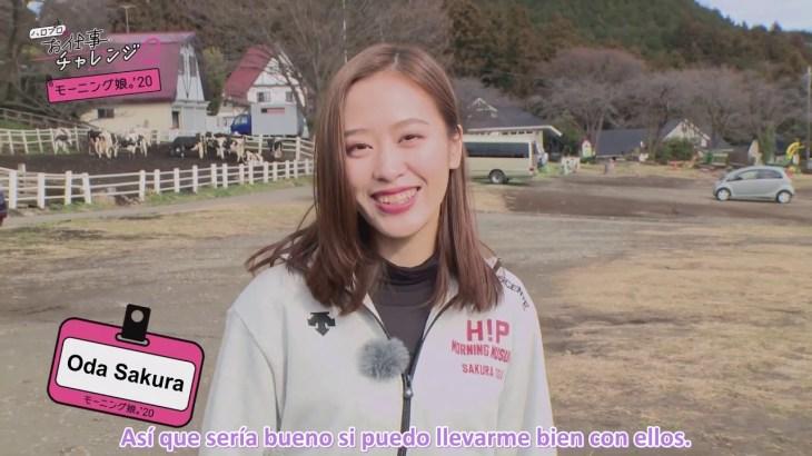 "[13.02.2020] ""Hello! Pro no Oshigoto Challenge! 2"" 01-Morning Musume '20 (Sub Español) − アフィリエイト動画まとめ"
