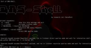 DNS-Shell