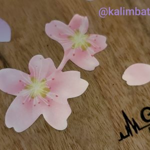 picture of cherry blossoms decals on kalimba close up