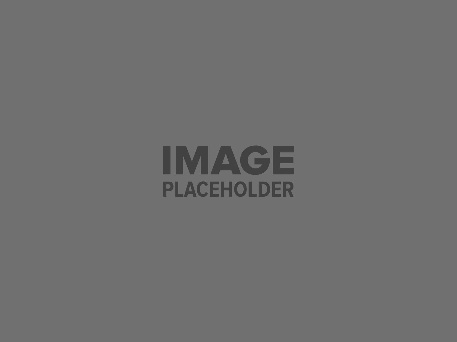 pojo-placeholder-2