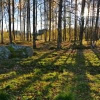 Karhuntaljalla haudattu - Hautaröykkiöitä ja kulttipaikkoja Lempäälän Päivääniemessä