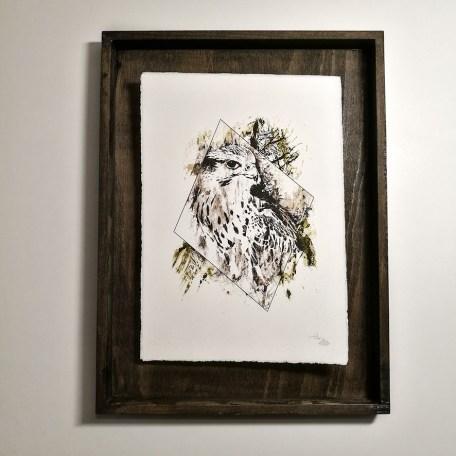 """Falco Cherrug"" – HelvEdition by Ka L-O-K   Special Edition Fine Art Print on Laid Paper"