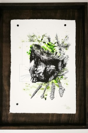 """Sciurus Vulgaris"" – HelvEdition by Ka L-O-K 