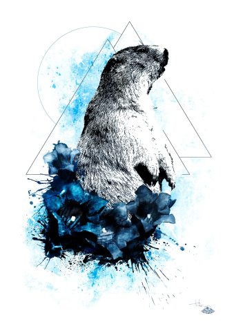 """Marmota Marmota"" (Alpine Groundhog) – HelvEdition by Ka L-O-K"