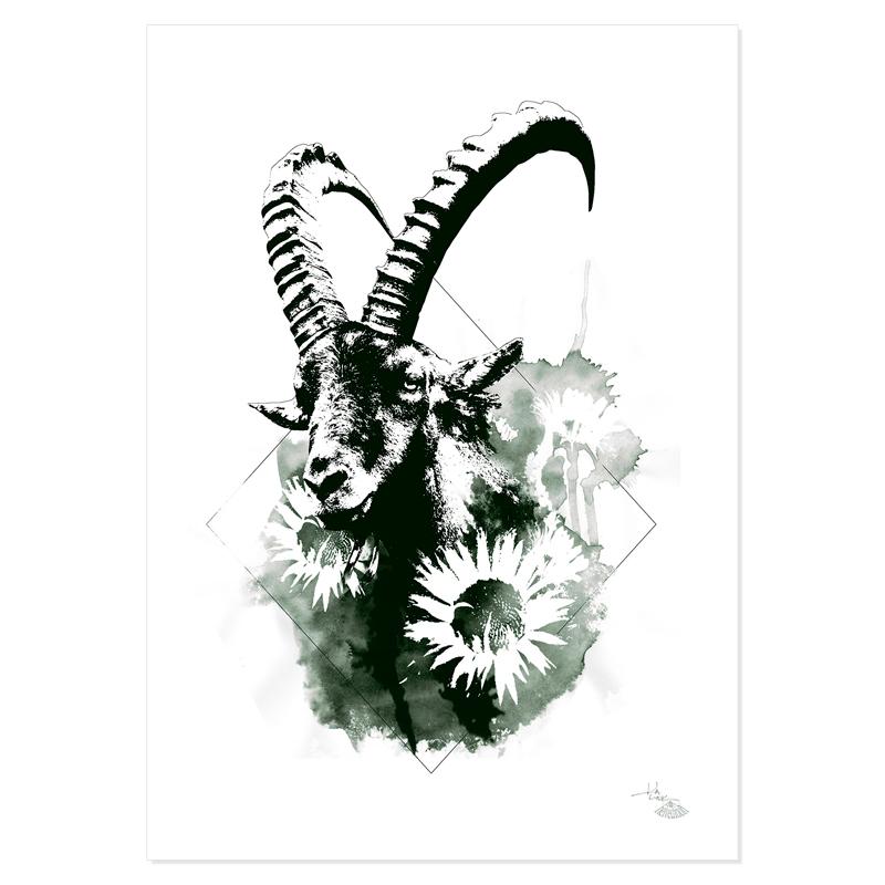 """""""Capra Ibex"""" (Le Bouquetin) – HelvEdition by Ka L-O-K"""