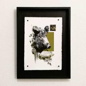 """Wildsau"" | HelvEdition – Sus Scrofa von Ka L-O-K | Kunstdruck auf Büttenpapier"
