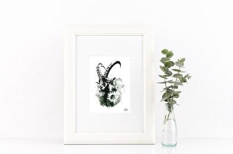 """Mock Up / Modèle avec l'illustration – """"Le Bouquetin"""" Capra Ibex de la série HelvEdition par Ka L-O-K   Graphic Arts"""