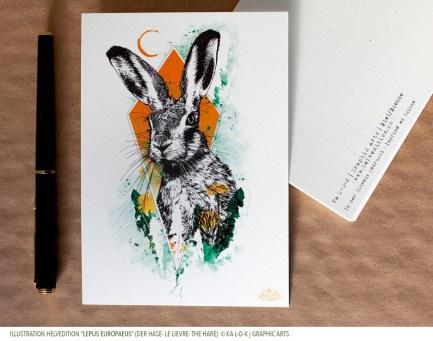 "Carte HelvEdition avec l'illustration ""Lepus Europaeus"" - Ka L-O-K | Graphic Arts"