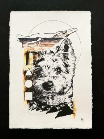 Commisson Work Bounty - Yorkshire Terrier