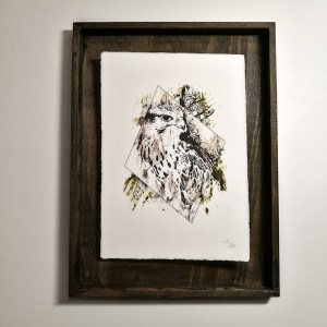 """Falco Cherrug"" – HelvEdition by Ka L-O-K 