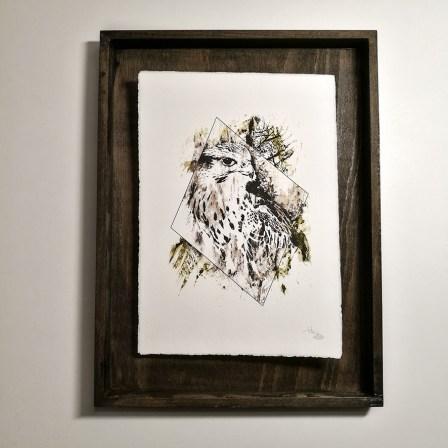 """Falco Cherrug"" – HelvEdition by Ka L-O-K   Edition Spéciale, impression sur papier vergé"