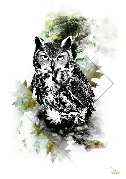 """Bubo Bubo"" (Eagle Owl) – HelvEdition by Ka L-O-K"