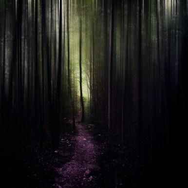 Moody Woods - into the Light | Ka L-O-K