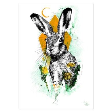 """""""Lepus europaeus"""" (The Hare) – Illustration from the art series HelvEdition by Ka L-O-K 