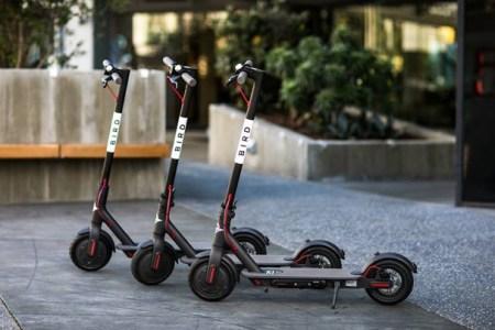 scooters bird en mexico