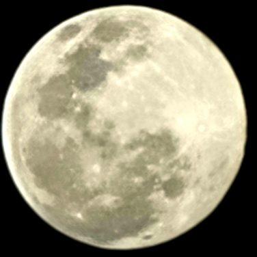 Luna Zoom 100x