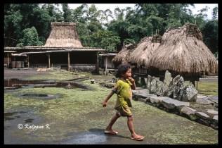 Village child of Flores