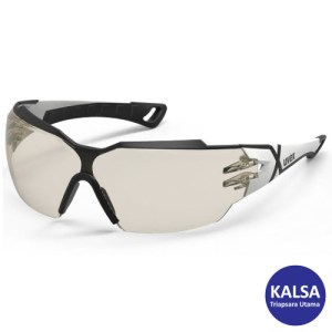 Eye Protection 9198.064 Uvex Supravision Excellence Sunglare Filter Pheos CX2