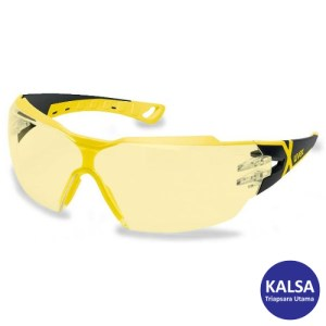 Eye Protection 9198.285 Uvex Supravision Excellence CX2