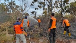 Proses penanganan kebakaran hutan dan lahan di wilayah PPU